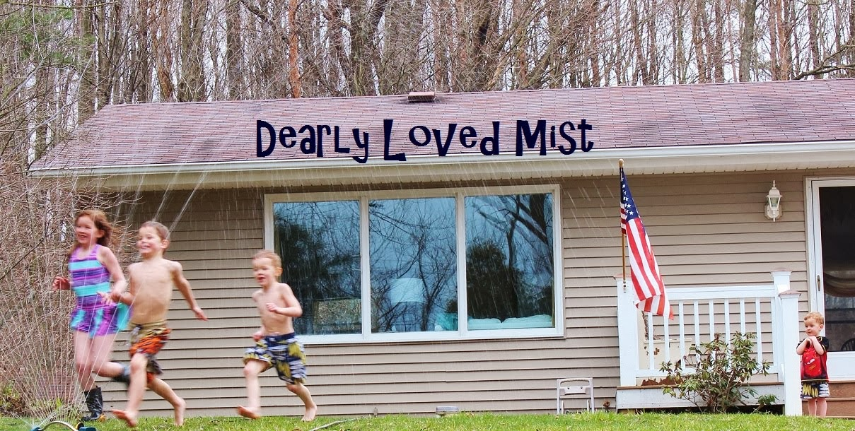 dearly loved mist