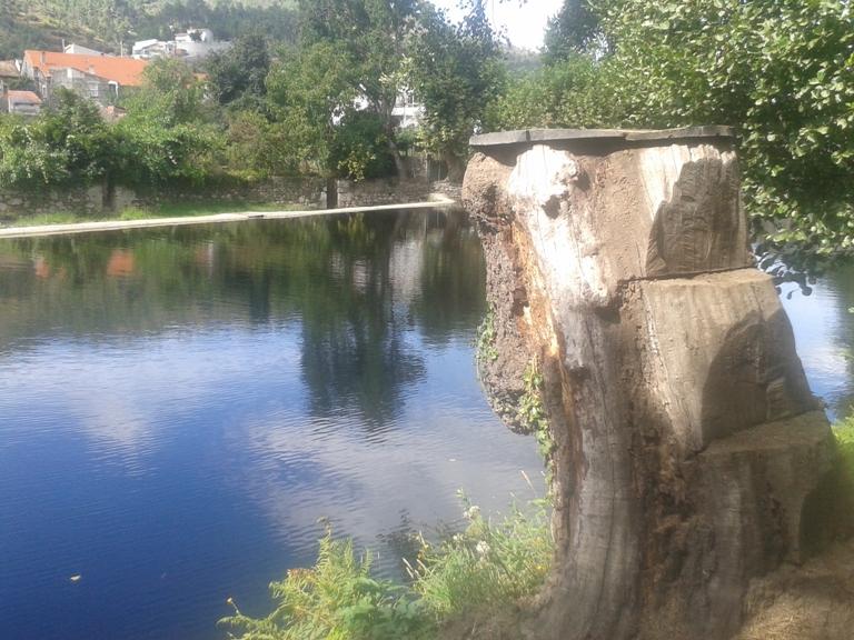 Saltos para a água