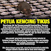 Kencing Tikus Atau Leptospirosis