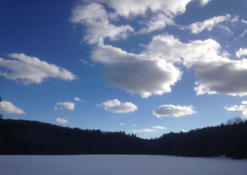 lac jamison.