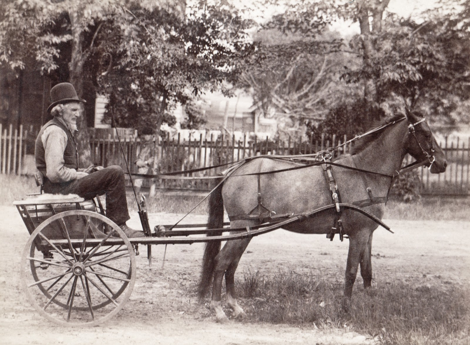 Displaying 17> Images For - Horse And Buggy...