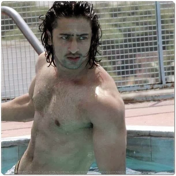 posted by devil at 10 03 am reactions labels shaheer sheikh