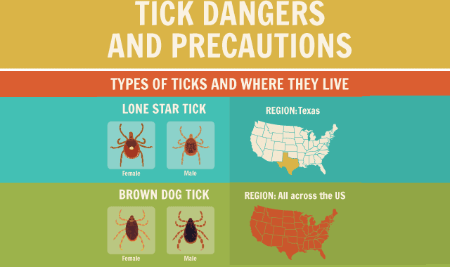 Tick Dangers and Precautions