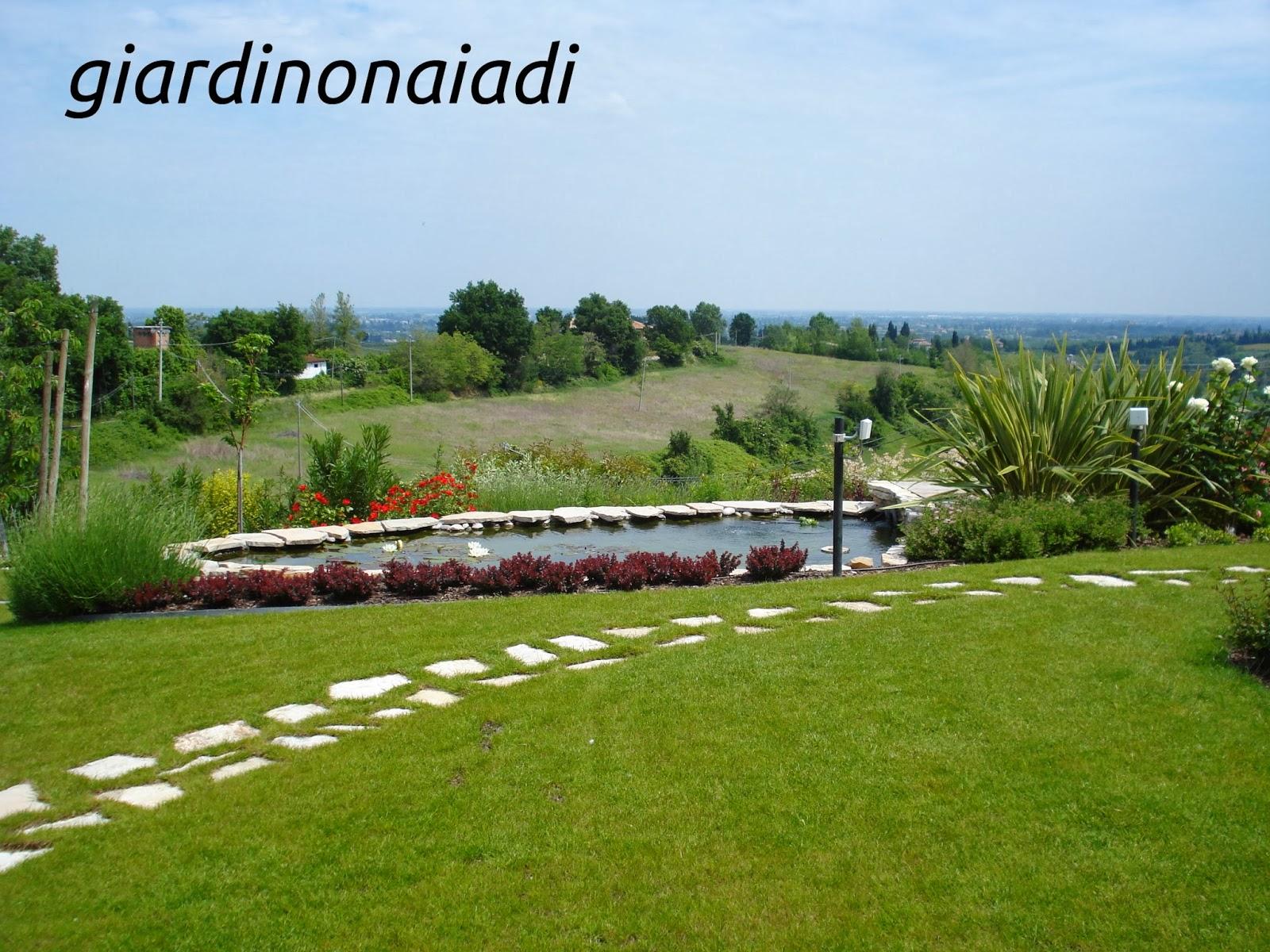 Il giardino delle Naiadi: DUE PASSI IN GIARDINO seconda parte