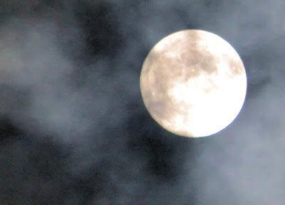 photo of the supermoon by Nancy Zavada