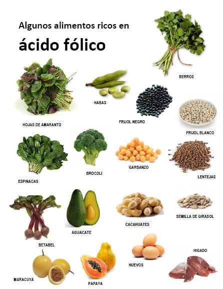 Del campo de la chinantla al plato propiedades de nuestros alimentos locales - Lista de alimentos ricos en hierro ...