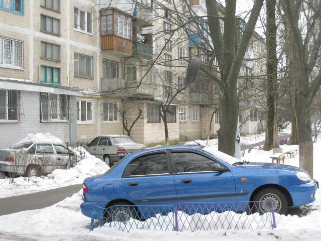 авто, снег и шина на дереве