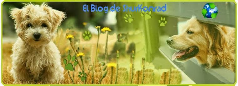 ..:: El Blog de ShurKonrad ::.. Perú _/