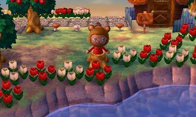 Animal Crossing New Leaf Cafe Wont Let Me Work