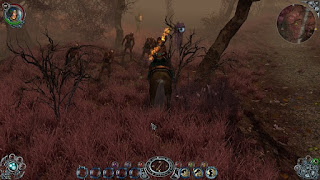 sacred-2-gold-pc-screenshot-www.ovagames.com-4