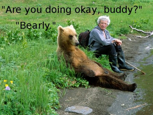 Are You Doing Okay Buddy - Bearly