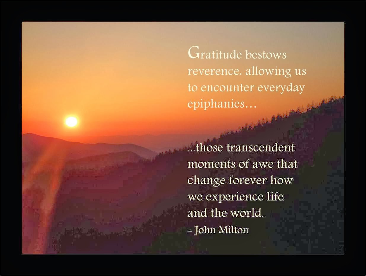 30 Day Gratitude Quote