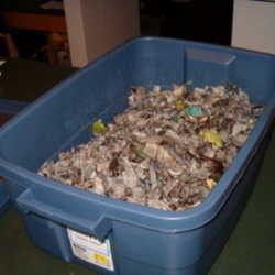 how to do vermicompost