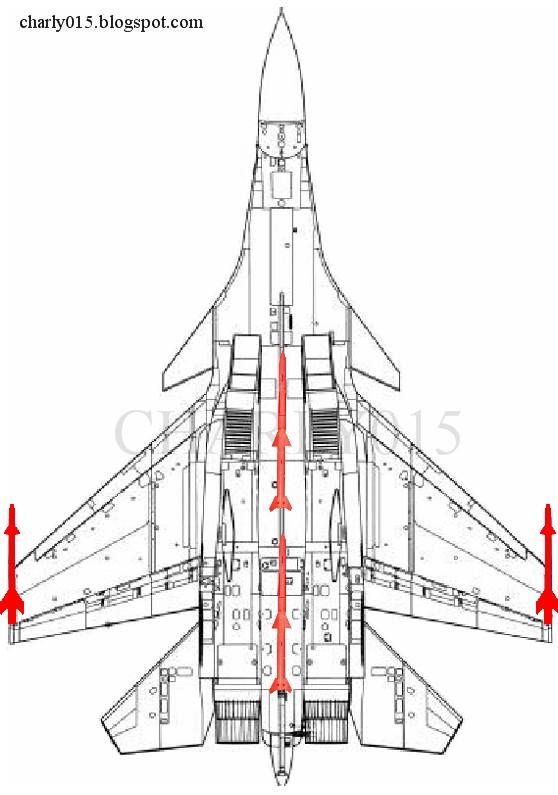 El J-15 es Mejor que el F/A-18 en Combate Aéreo y Ligeramente Inferior en Términos de ataque contra Objetivos Marítimos Su-33+plano+pl-12+china