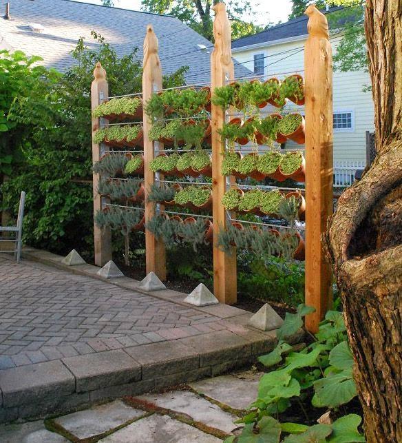 Muito Fazer Fácil: Jardim Vertical com Vasos Suspensos e Alinhados GG17