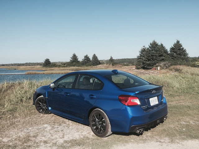 2016 Subaru WRX Rally Blue rear