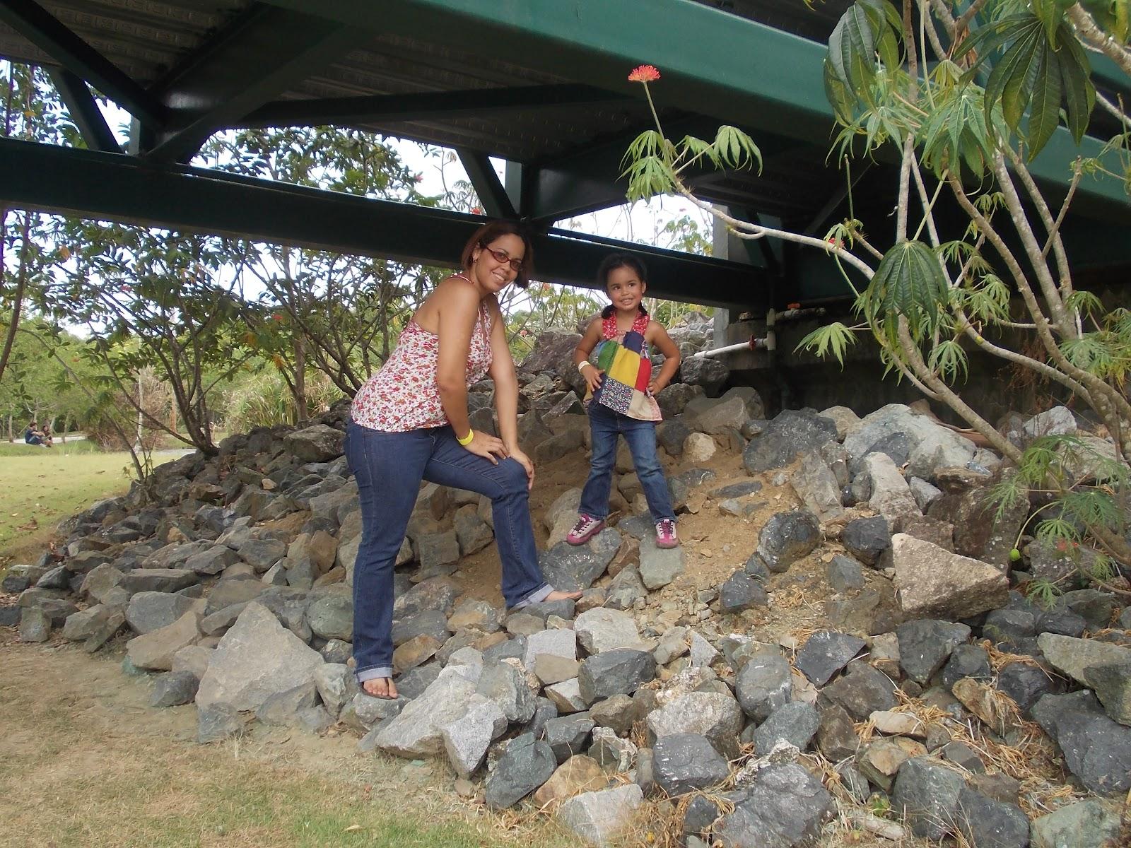 Aprendo jugando en casa visitando el jard n bot nico de for Actividades en el jardin botanico de caguas