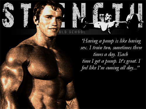 Arnold Schwarzenegger greatest quotes about the pumpArnold Schwarzenegger Bodybuilding Quotes Wallpaper