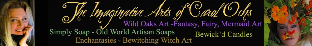 Carol Ochs Arts: Simply Soap, Wild Oaks Art, & Enchantasies!