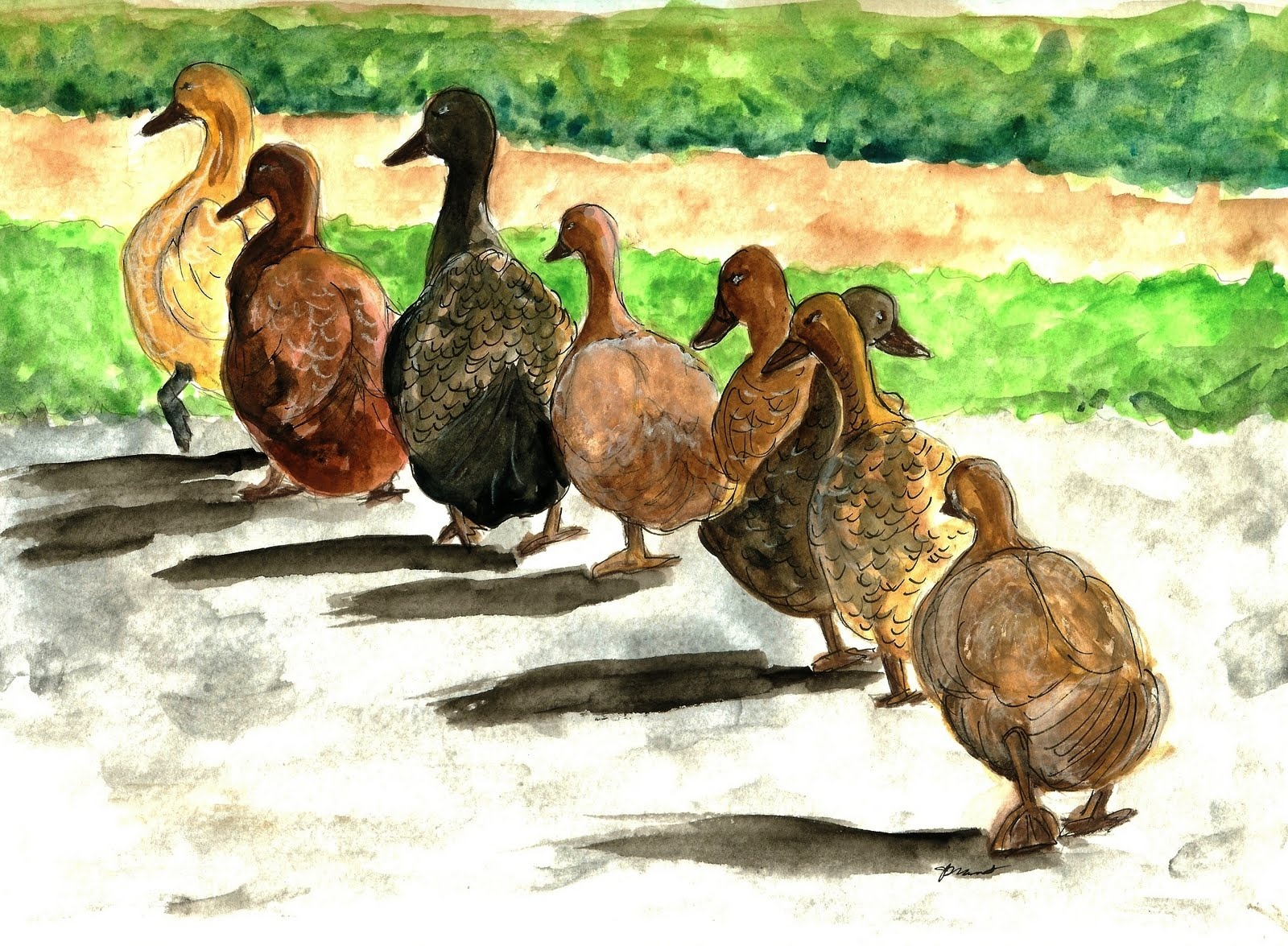How to Paint Ducks in a Row in Watercolor