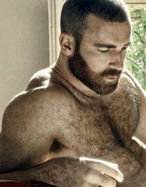 pelados e gostosos homens tesudos gay 02 loiros barbudos