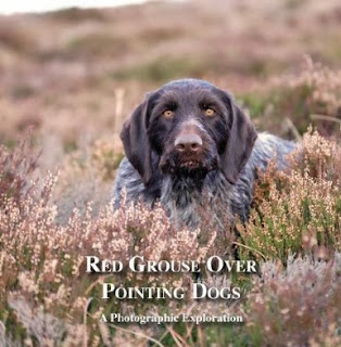 http://www.amazon.co.uk/RED-GROUSE-OVER-POINTING-DOGS/dp/8461628322