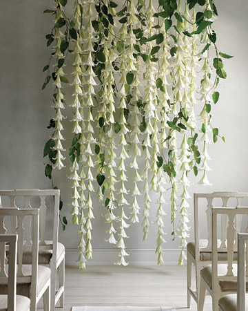 Easter Lily Backdrop courtesy of