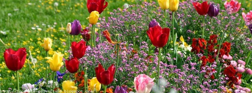 Couverture facebook beau paysage de printemps