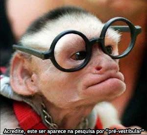 Monkey Intelectual