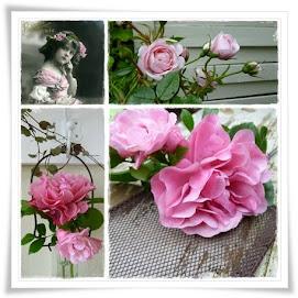 Roser i hagen