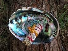 Abalone..
