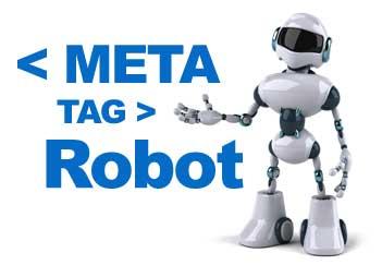 Meta Tag Robot Blog
