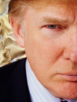donald trump hair. donald trump hair blowing.