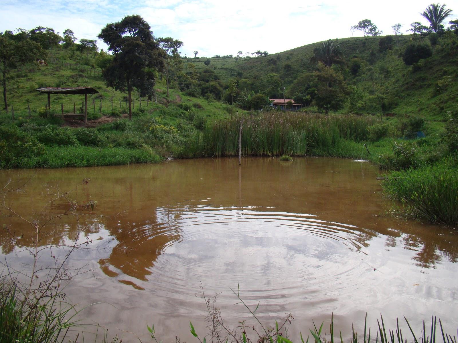 Bastante água LIMPA com açudes onde pode ser desenvolvida a  #614B2B 1600x1200 Balança Banheiro Boa