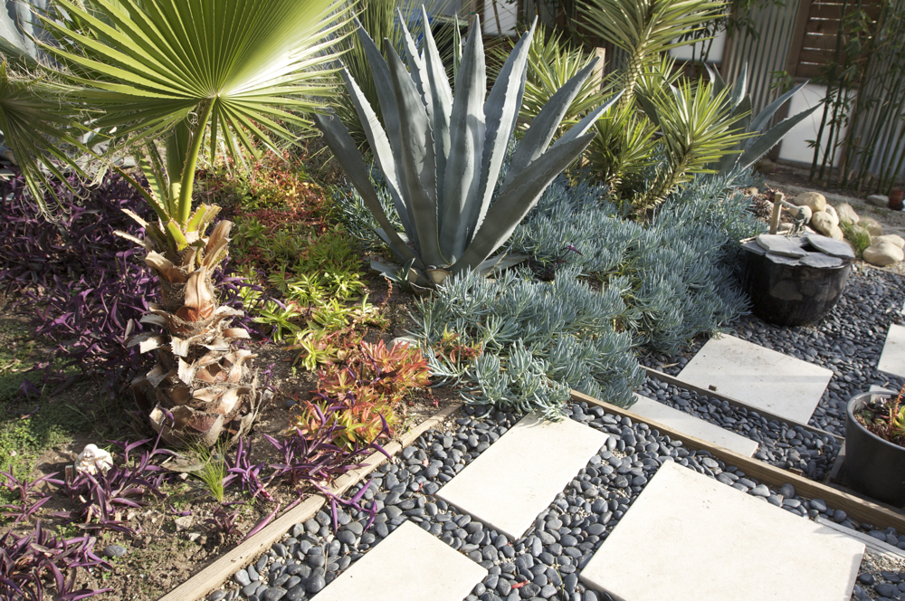 6 tips for minimal maintenance garden design for Gravel garden designs