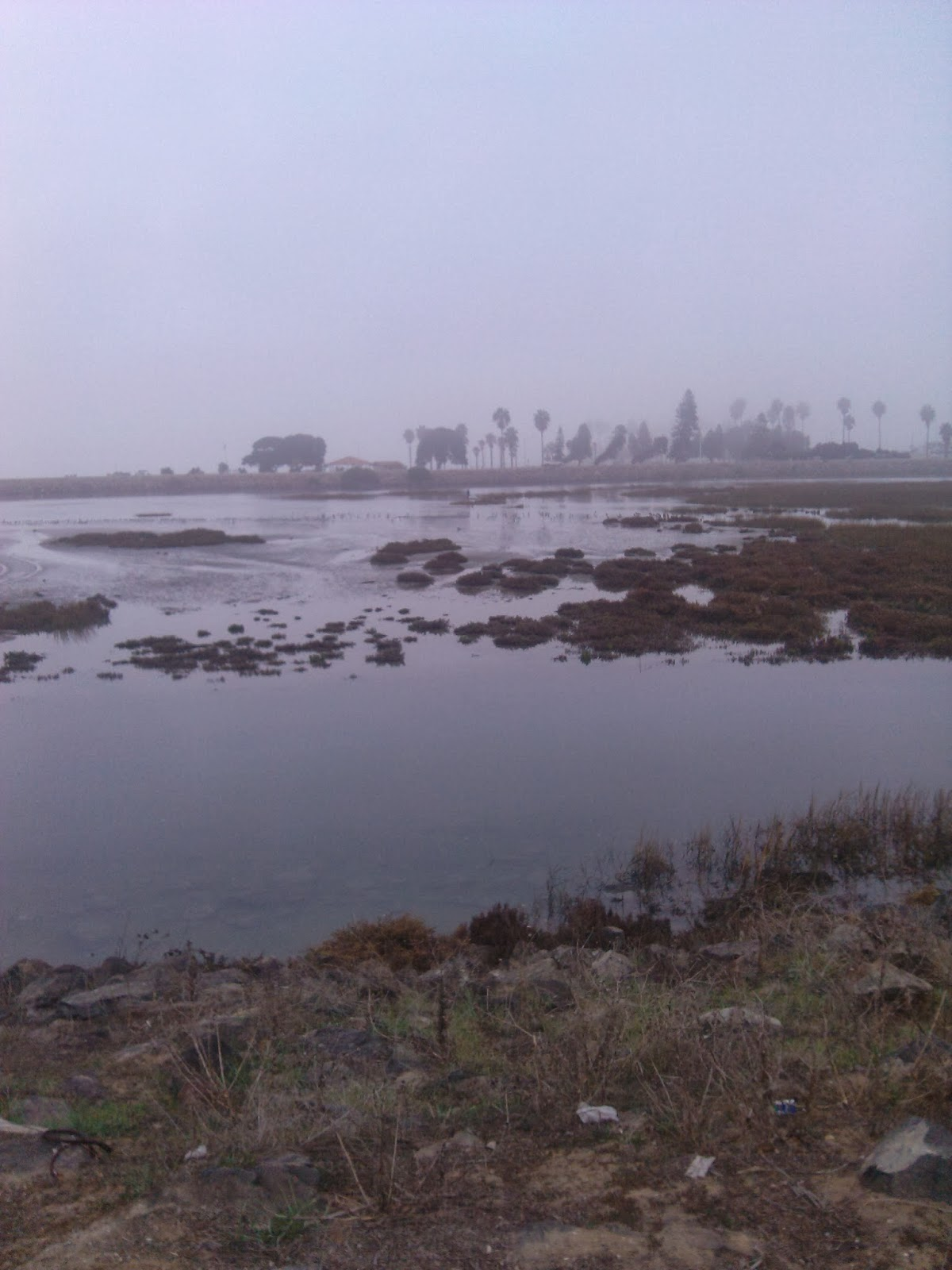 San Diego River Mouth
