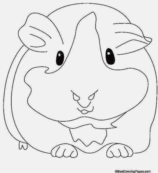 Cute Guinea Pig Coloring Pages - Colorings.net