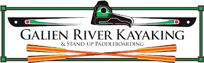 Galien River Kayaking and Stand Up Paddleboard Rentals