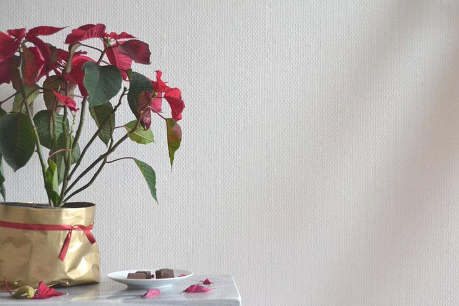 recette fudge chocolat noir fleur de sel