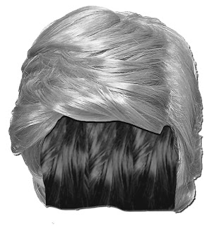 New Monopoly Token, Donald Trump's Wig