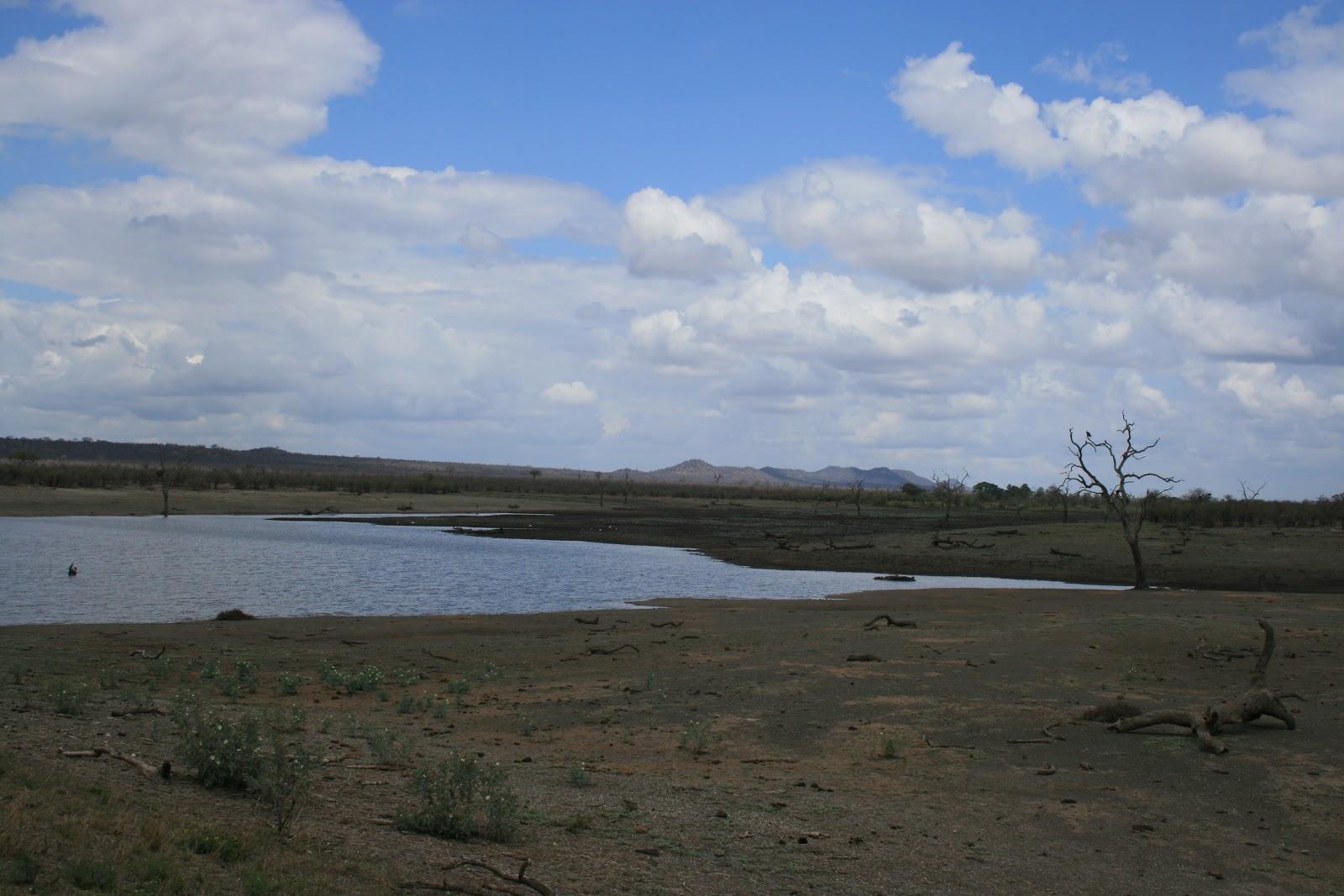 Over ongebaande paden.......: oktober 2012