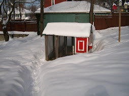 The Coop in January