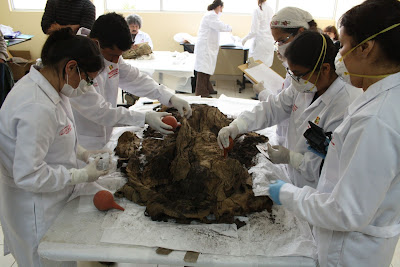 500-year-old mummy found in northern Lima