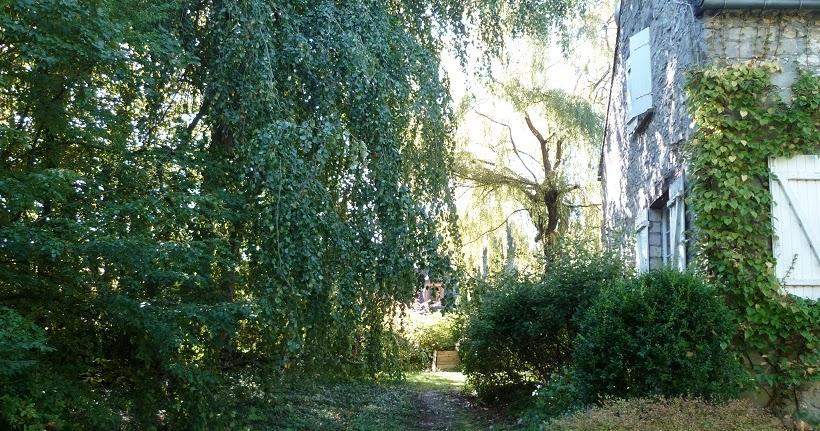 Derri re les murs de mon jardin l 39 arbre sorcier - Derriere les murs de mon jardin ...