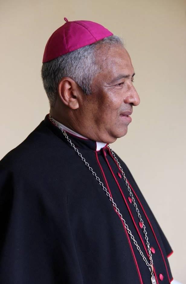 Bispo coadjutor (2016)