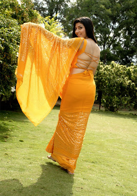 sarah sharma in saree tollywood spicy photo gallery