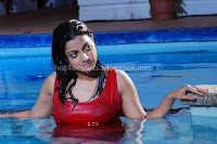 Wet, Keerthi, Chawla, Cleavage, and, thigh