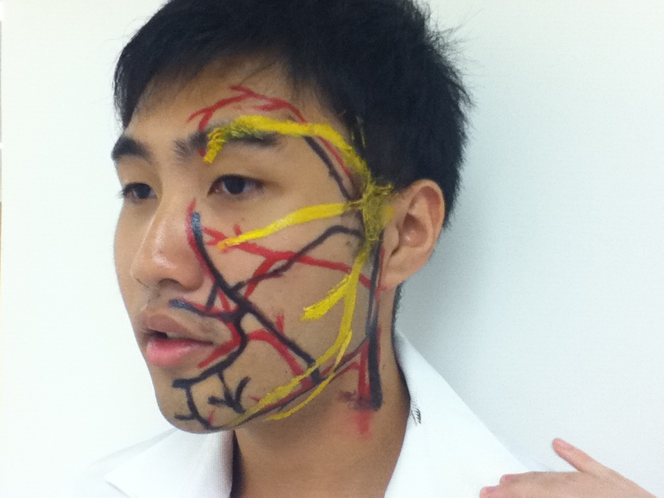 Teeteetootooth D Oral Health Centre Face Painting Session