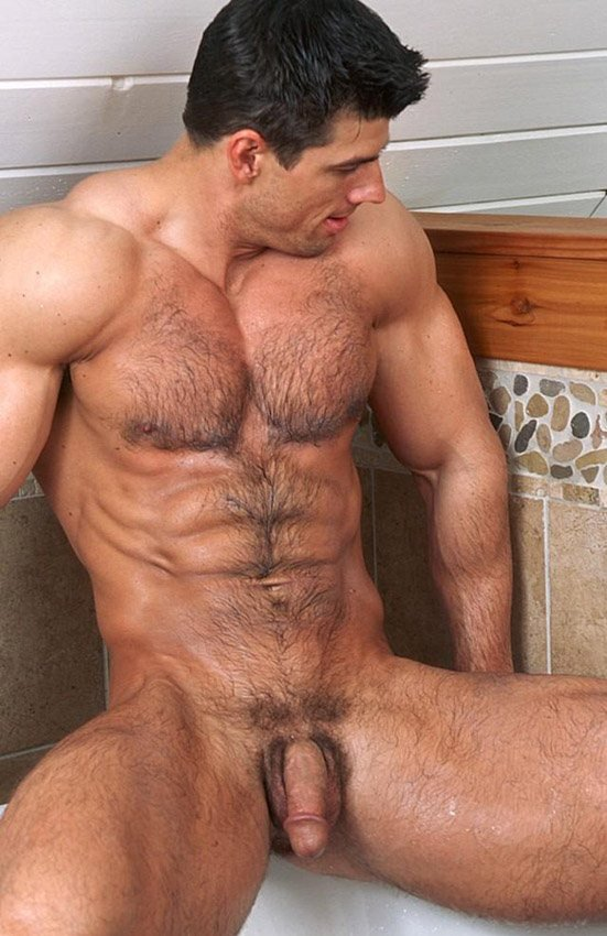 Best Gay Blog Hairy Naked Muscled Hunk