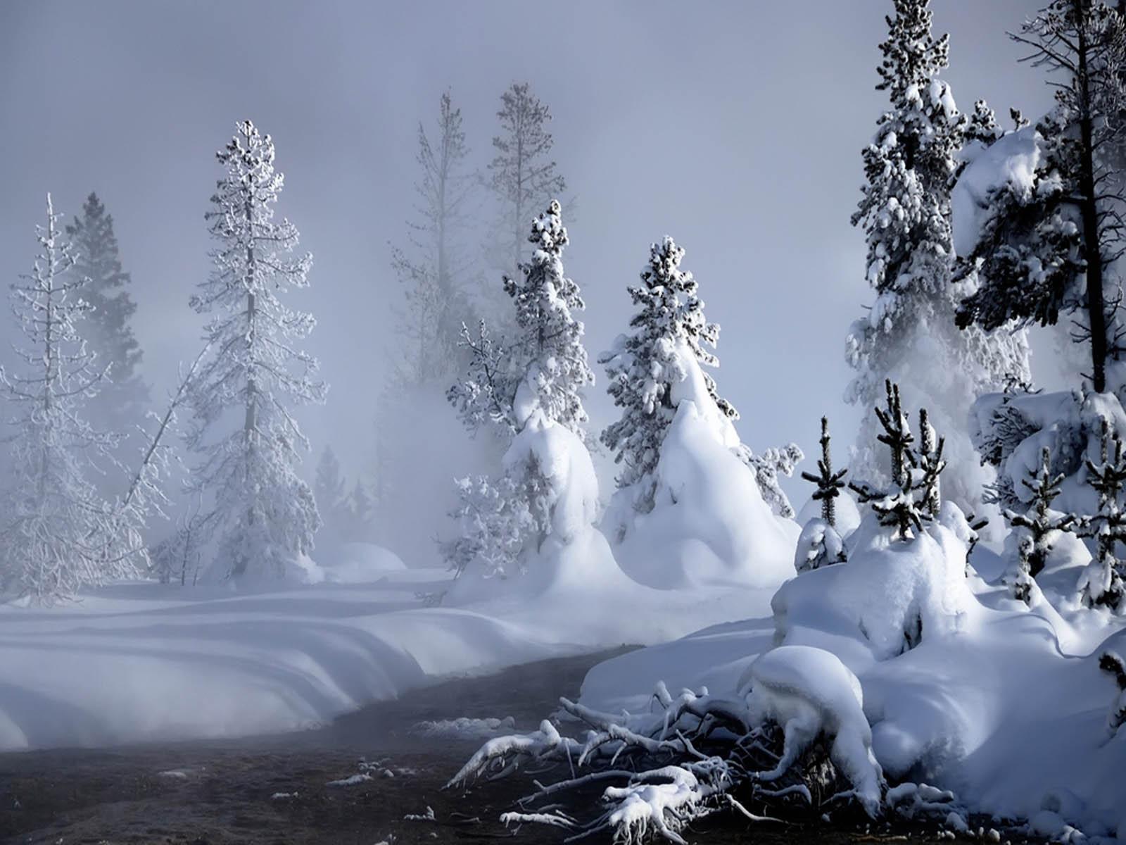 Snow Wallpapers Screensaver